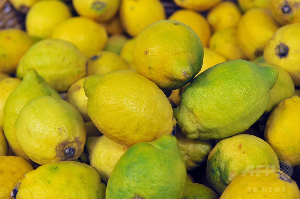 ズボンにレモン6個隠した女性、NZ税関が香港へ送還