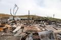 米カリフォルニアの山火事、死者31人に 州史上最悪
