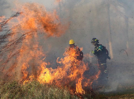 G7のアマゾン火災支援は「ごくわずか」 ボリビア大統領が一応の謝意