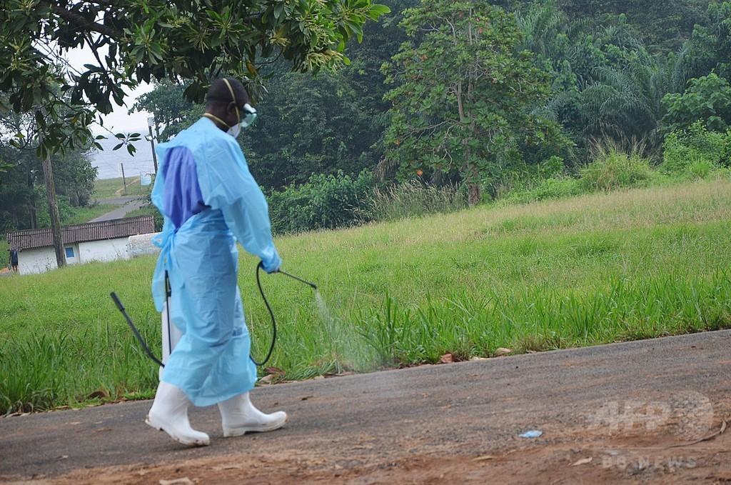 エボラ流行で隔離の地区、住民に飢餓の危機 リベリア