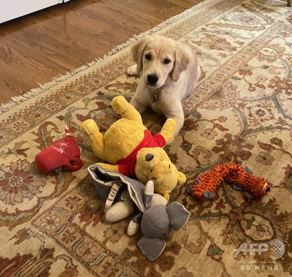 愛犬も中国批判に一役? 米ポンペオ氏「くまのプーさん」の写真が話題