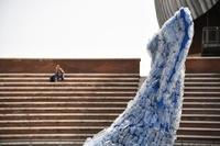 250キロのプラスチック製クジラ、毎秒の海ごみ量と同じ 伊ローマ
