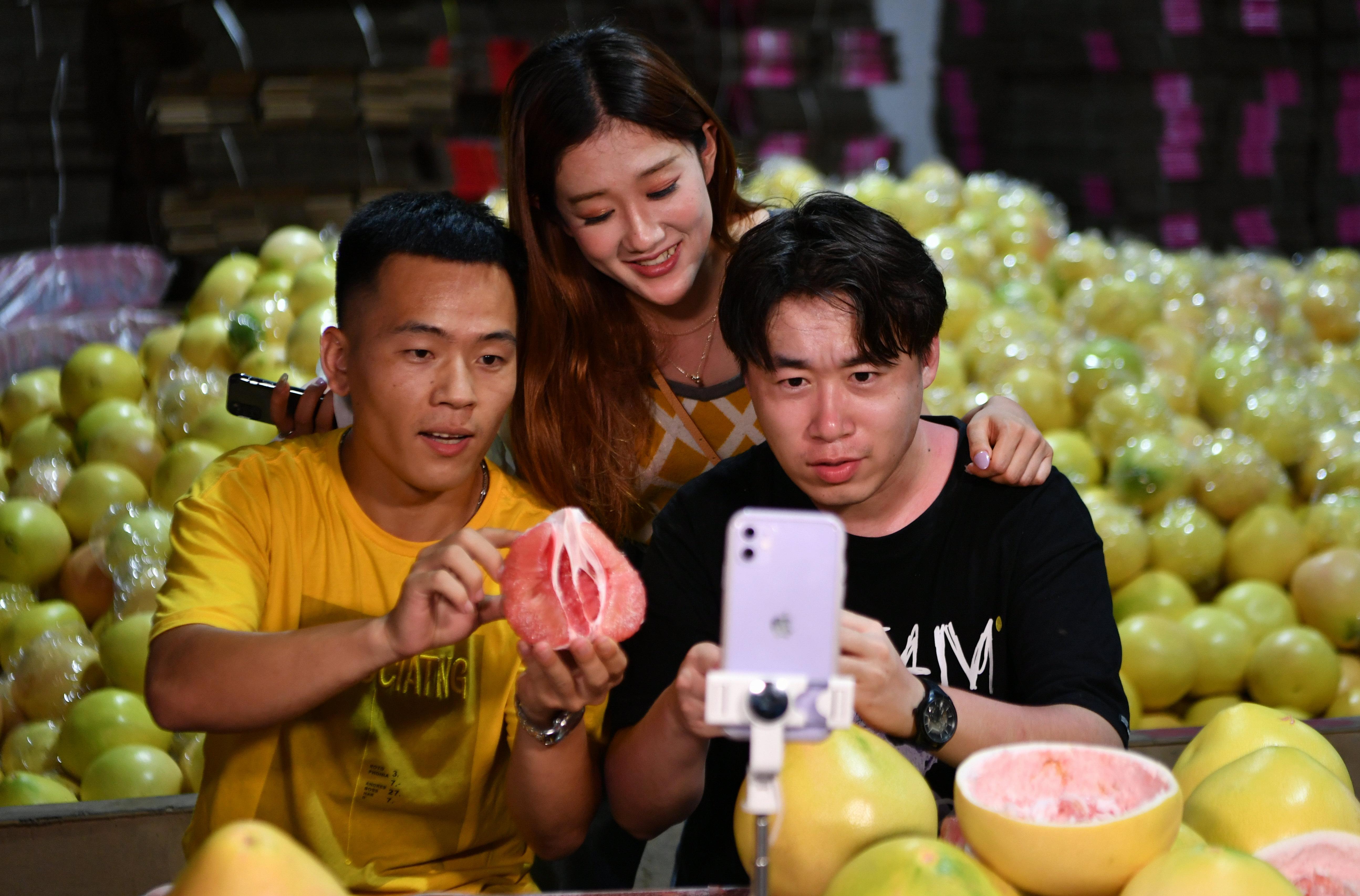 「中国蜜柚の里」を訪ねて 福建省平和県