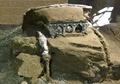 ポンペイ遺跡で馬車発掘、イタリアで「類がない発見」