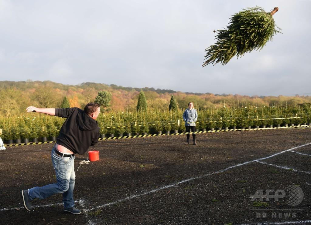 英国ではクリスマス前、「ツリー投げ」大会を初開催