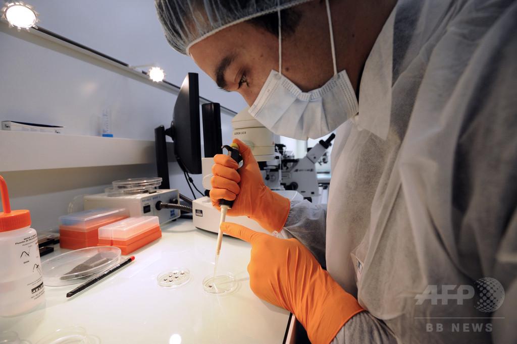 ゲノム編集、ヒト胚への応用一部容認を提言 米科学アカデミー