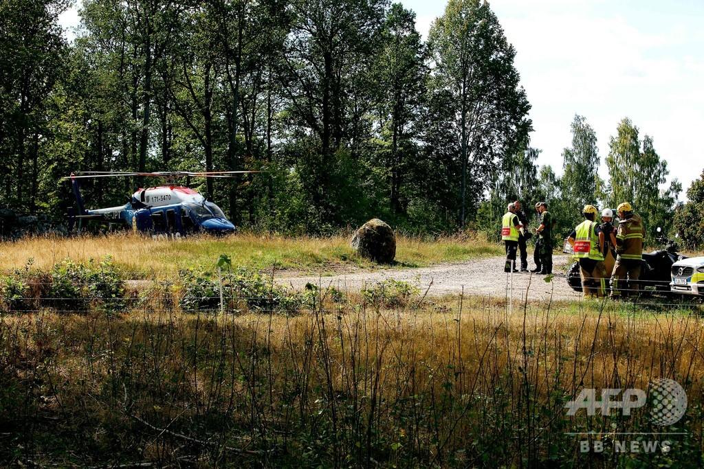 戦闘機が鳥と衝突し墜落、操縦士は無事脱出 スウェーデン