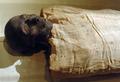 古代エジプト女王のミイラを特定 歯が決め手に