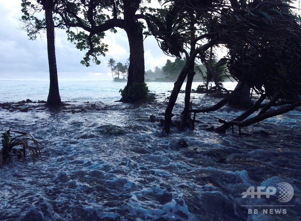 「回復力に富む」サンゴ礁の島、気候変動に対応か 研究