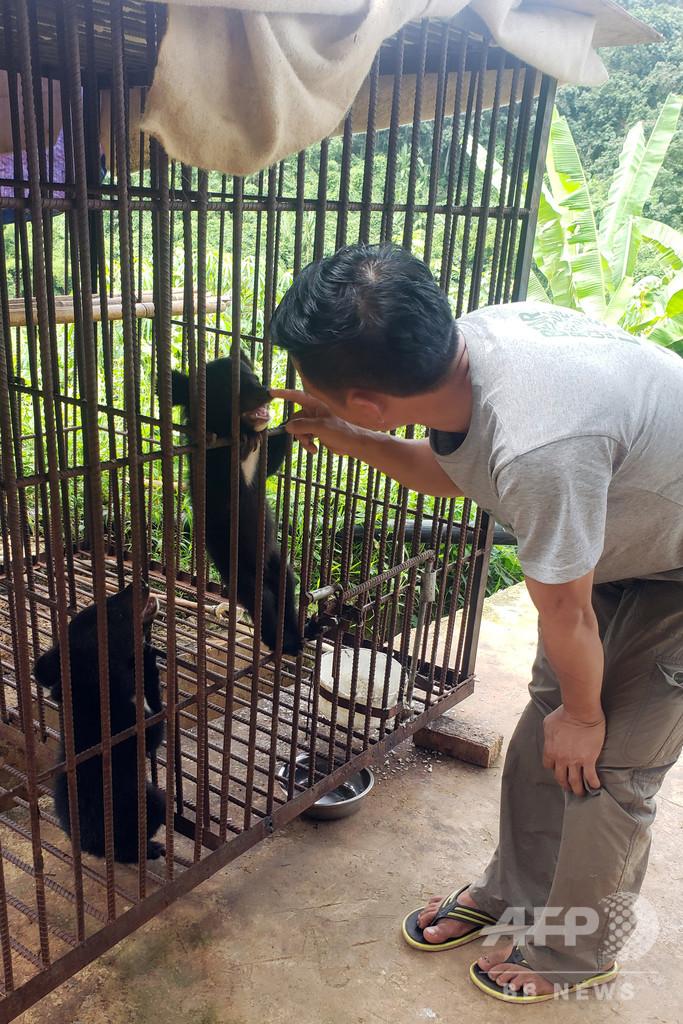 ツキノワグマの子ども5匹を救出 ラオス