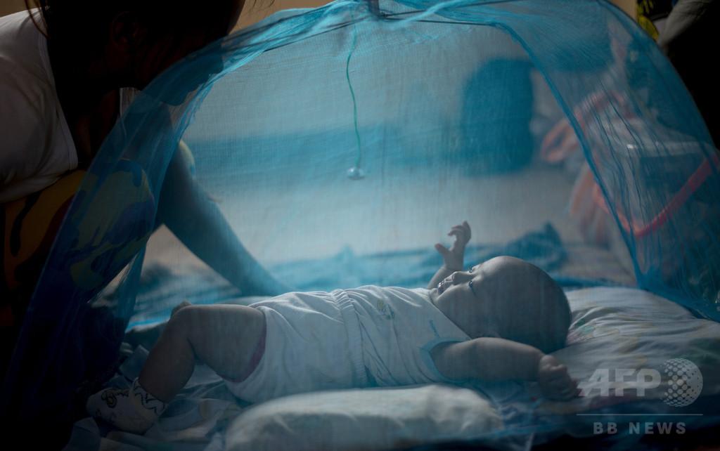 マラリア死者、2000年比60%減 蚊帳の配布が奏功 国連