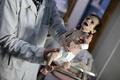 シリアの封鎖地域で、餓死する子どもたち