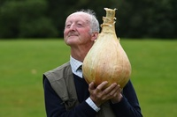 何人前あるんだろう? 巨大過ぎる野菜がずらり、英コンテスト