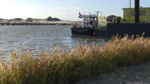 動画:野生生物を呼び戻す、オランダで人工島建設