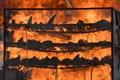 希少種インドサイの角2500本を焼却、反密猟訴える