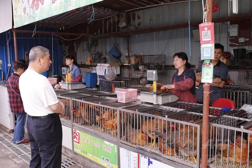 生きた家禽(かきん)の取引、上海で再開