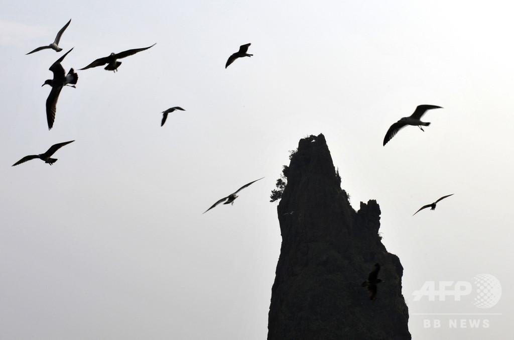 「宝船発見」と主張の韓国企業、当局が調査開始 相場操縦などの疑い