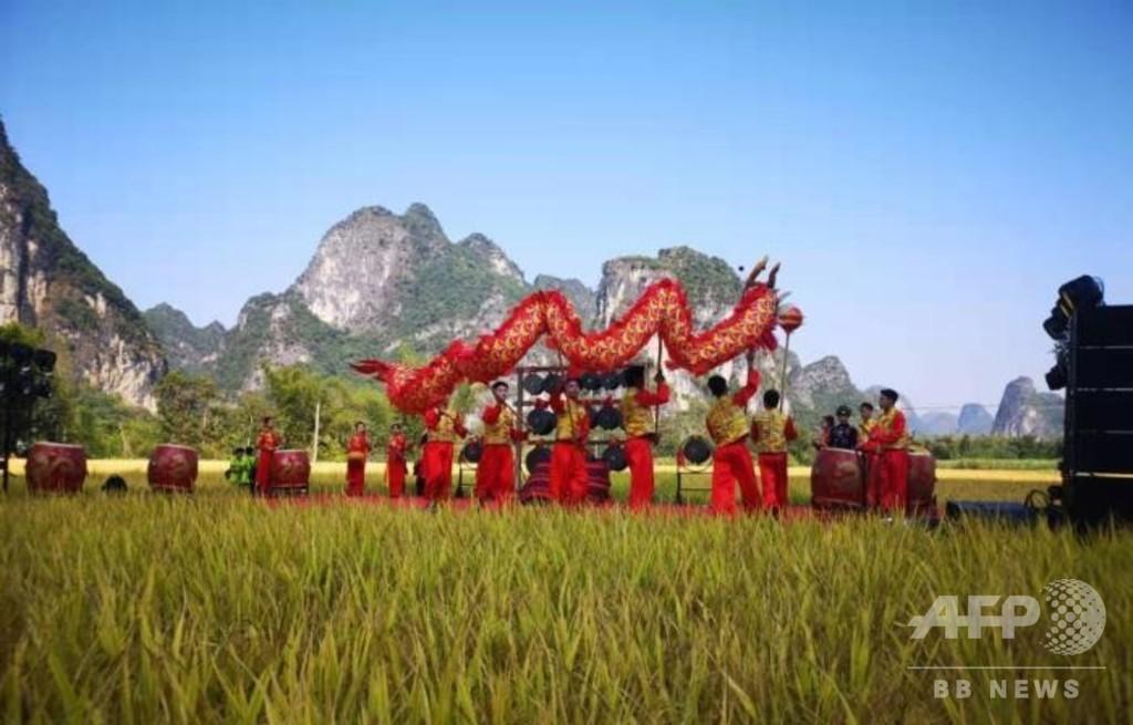 中国・ベトナム国境でチワン族の収穫祭