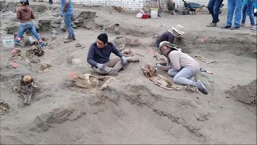動画:チムー王国の子ども集団いけにえ、新たに遺骨50体  ペルー