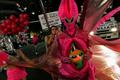 シドニーで同性愛者の祭典、1万人が狂喜乱舞