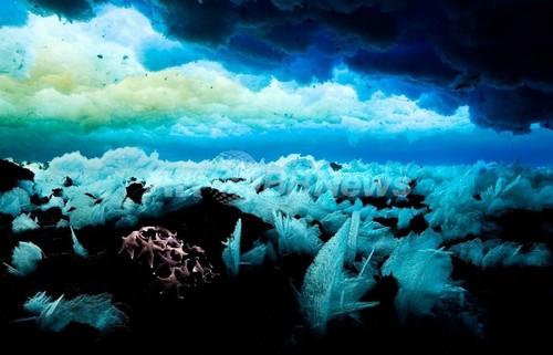 深海にCO2を蓄積する「渦」、南極海で発見 英豪研究