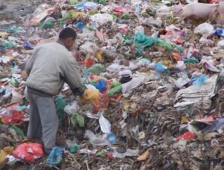 海中に漂うプラスチックはプランクトンの半分に匹敵 「海を殺すことは自分を殺すこと」