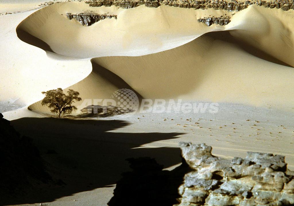 サハラ砂漠で覆面グループ、19人を誘拐