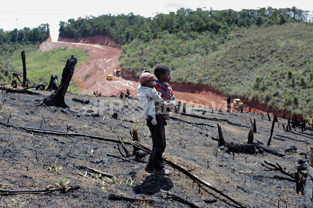 生物の宝庫マダガスカル、鉱山開発の「危険な賭け」