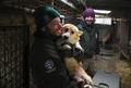 犬200匹の救出作戦開始、閉鎖された食用犬の飼育場で 韓国