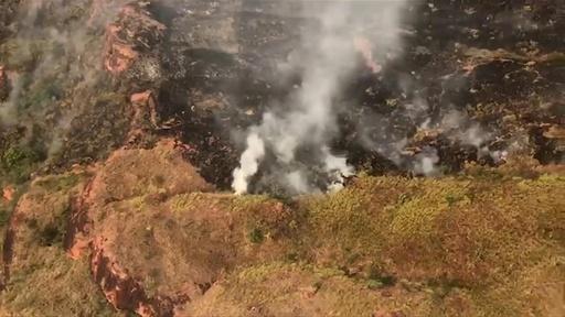 動画:伐採拡大するなか森林火災が急増、ブラジル・アマゾンの熱帯雨林
