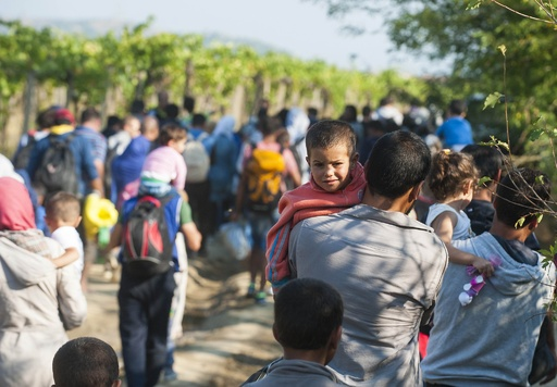 ブルガリア、軍をマケドニア国境に派遣 戦後最悪の難民危機