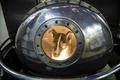 「ライカ」乗せた衛星打ち上げから60年、現在の宇宙実験は小動物が中心
