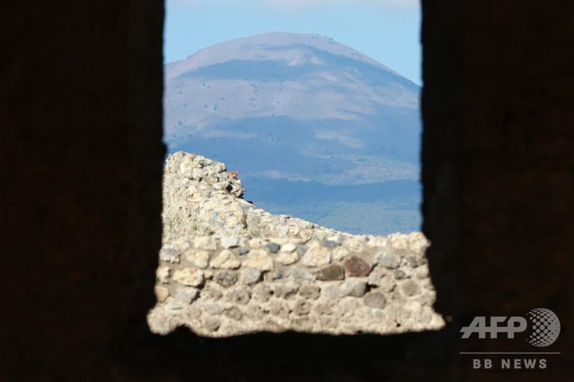 ベスビオ火山噴火、日付の新証拠 ポンペイ遺跡で発見