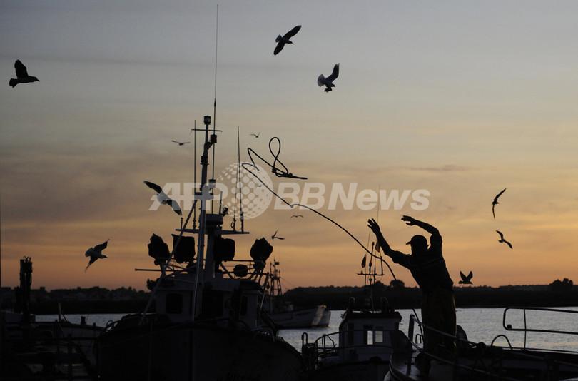 EU加盟各国、魚投棄禁止措置実施で合意