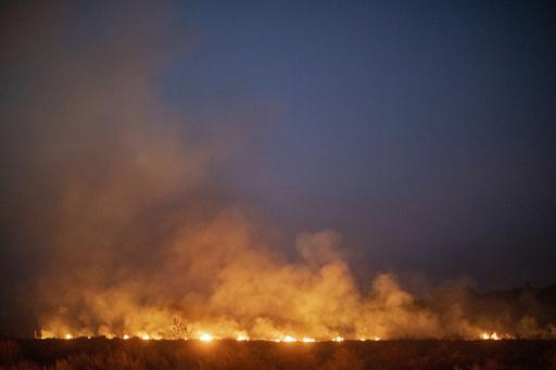 ブラジル、G7によるアマゾン消火活動支援を拒否