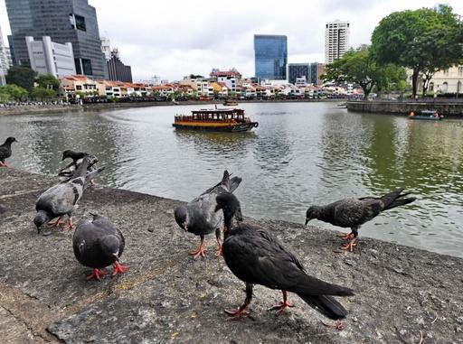予防接種受けていない外国人は入国禁止、シンガポールが検討