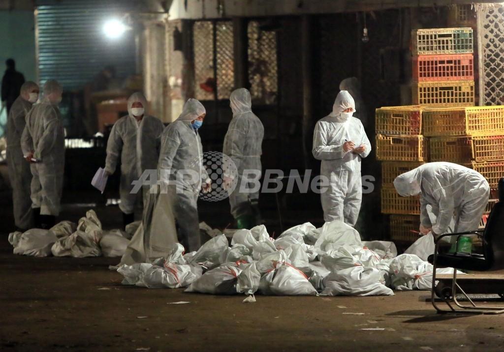 鳥インフルで6人目の死者、家禽類の殺処分も開始 中国