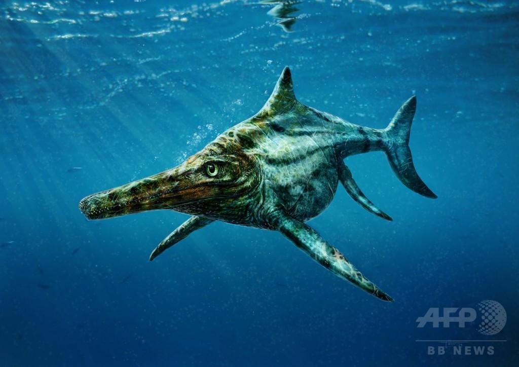 ネッシーの祖先?スコットランドで発見の化石は新種の生物