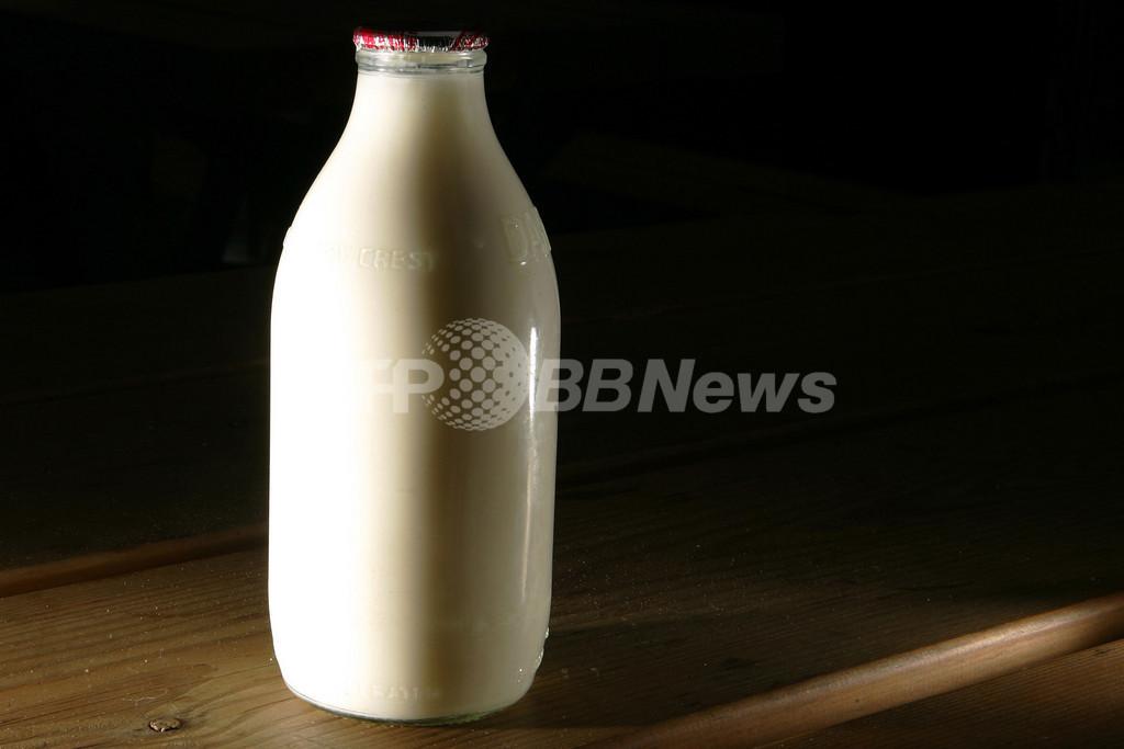 クローン牛子孫の牛乳を市販か?英食品当局が調査へ