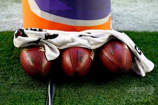 「胸が痛む」NFL選手が愛犬盗難被害に、身代金を要求される