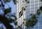 ドイツ銀行、従業員7000人以上を削減へ