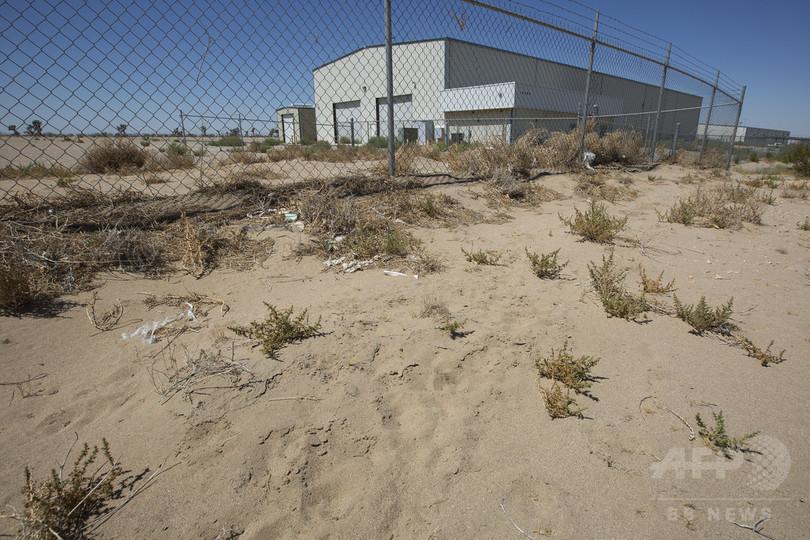 大麻栽培に起死回生を図る街、米カリフォルニア