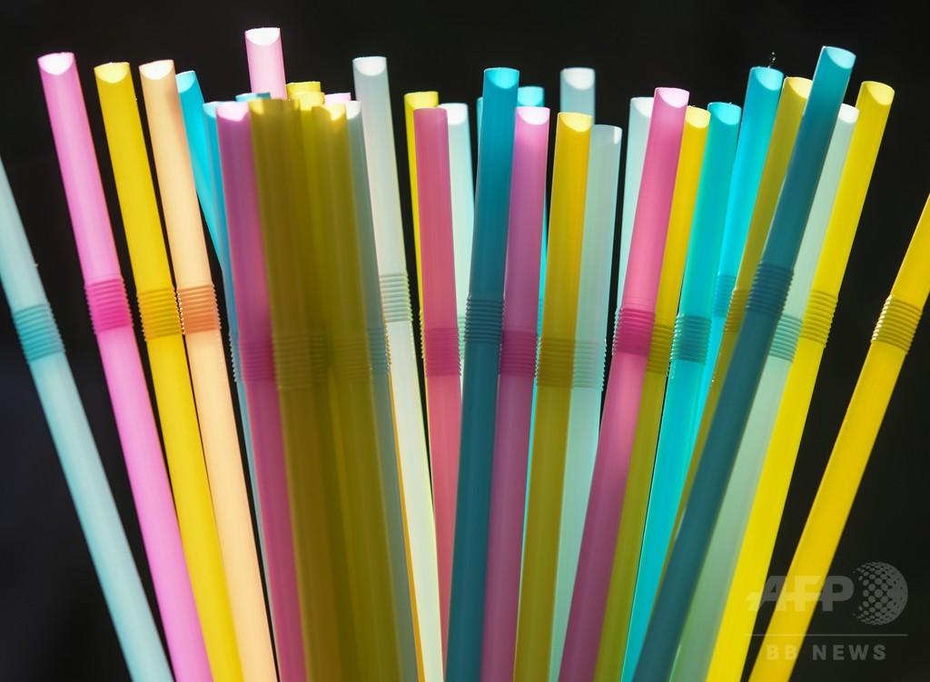 使い捨てプラスチックにノー! EU、ストローなど禁止を提案