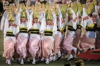 徳島で阿波踊り開幕