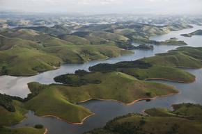 水力発電ダム、野生生物7割を絶滅に導く恐れ 研究