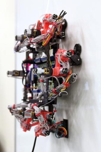 ヤモリをまねた超極細毛で壁を這うロボットを開発、カナダ大