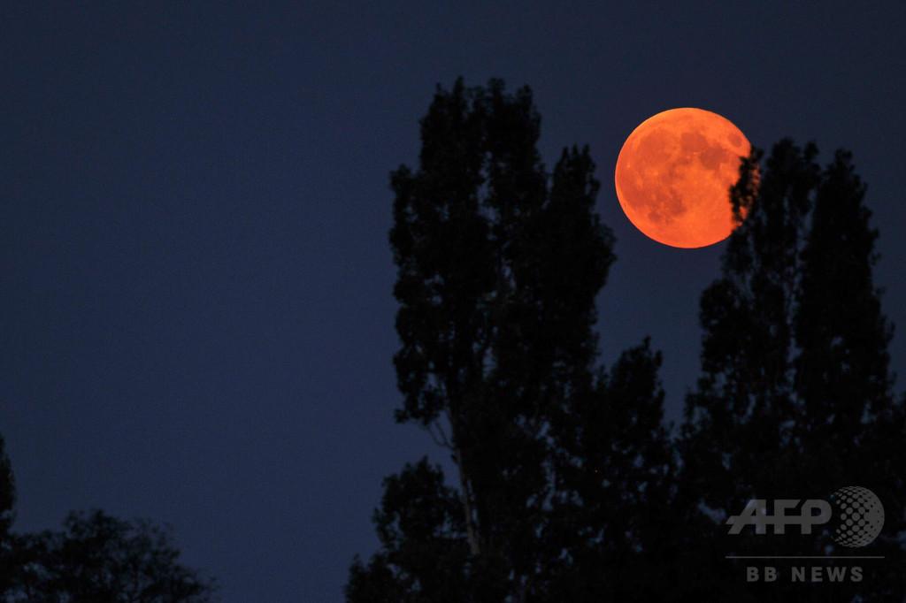 数十年に1度の天体ショー、スーパームーンと皆既月食が同時に