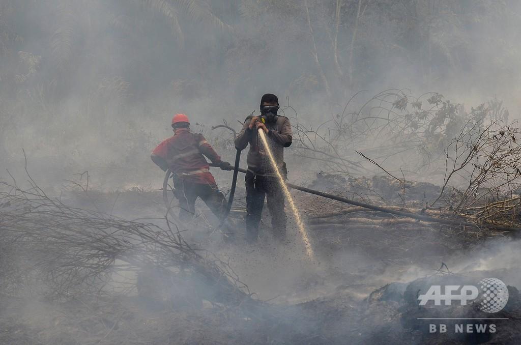 インドネシア森林火災、大気汚染が子ども1000万人に健康リスク 国連