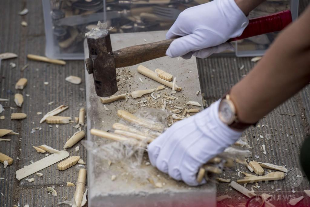 中国で象牙製品600キロを粉砕、違法売買のイメージ払しょくへ