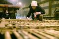 輸送車から「食用」ネコ600匹を救出、中国南部